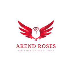 Arend Roses - varieties of excellence